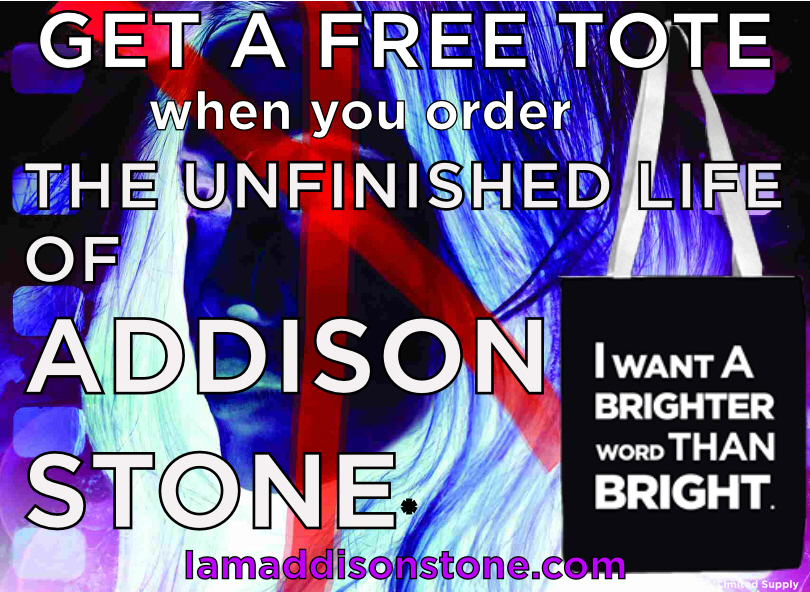The Unfinished Life Of Addison Stone Blog Tour Soho Press