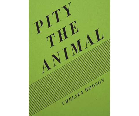 Pity-the-Animal